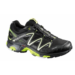 Chaussures trail salomon wings 2 GTX