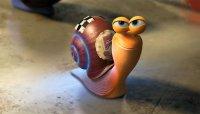 Portrait de snail